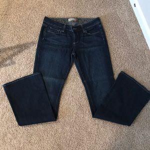 Denim - Paige jeans